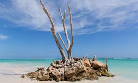 Wilmington NC Wedding Photographers | Punta Cana Vacation